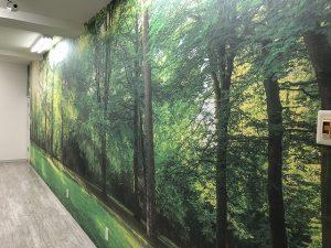 あんの木|壁紙|施工例0017